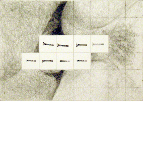 Censored Grid #7, 2008